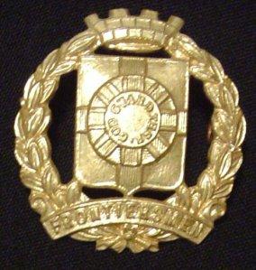 9 Mural Crown badge